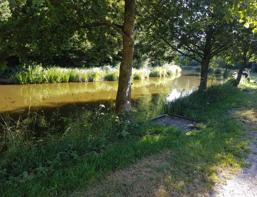 8th July Border Fisheries – Meridian Canal (20-64)
